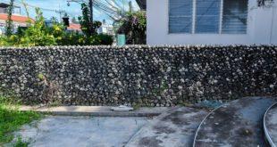 Необычный забор из ракушек