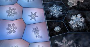 Красивые снежинки на фото Алексея Клятова