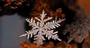 Зимняя макросъемка снежинок и кристалликов льда