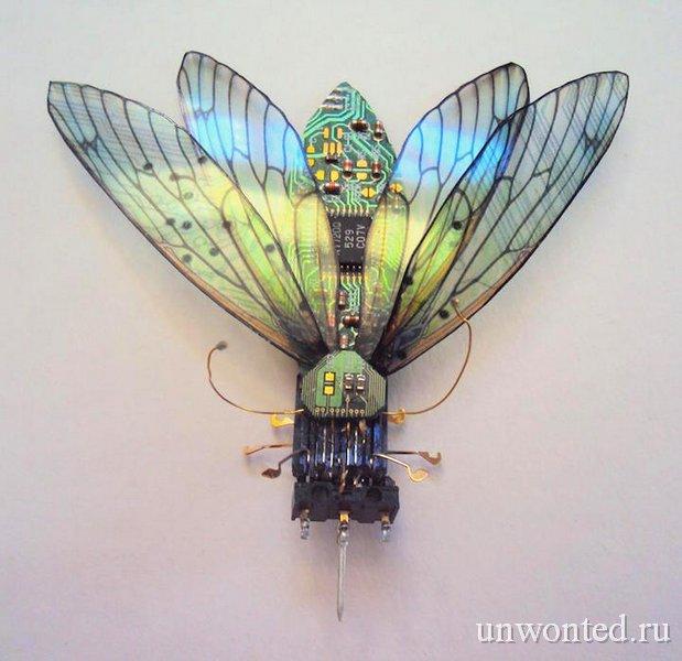 Жуки из отходов электроники