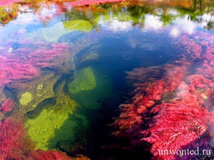 Каньо-Кристалес - растаявшая радуга