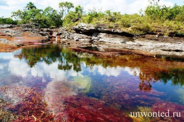 Река Растаявшая радуга - Каньо-Кристалес