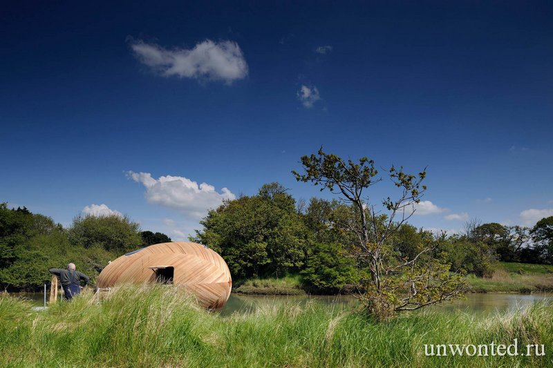 Дом-мастерская Exbury Egg в окружающем ландшафте