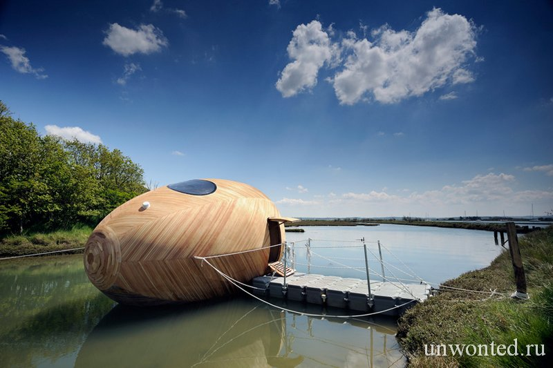 Дом Яйцо из дерева Exbury Egg