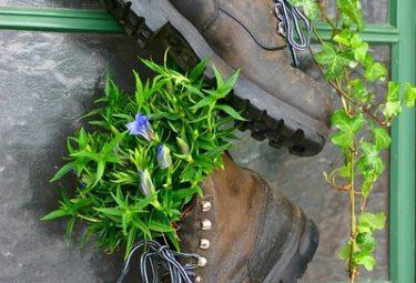 Необычная клумба из старой обуви