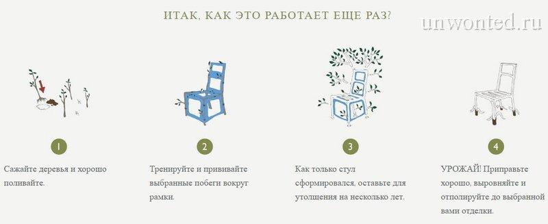 План выращивания мебели своими руками