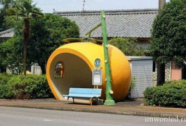 Фруктовые остановки Конагаи - апельсин