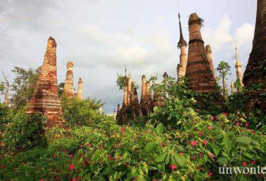 Храмовый комплекс Шве Индейн Пайя поглощенный джунглями