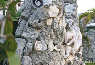 Бетонный забор украшенный морскими раковинами