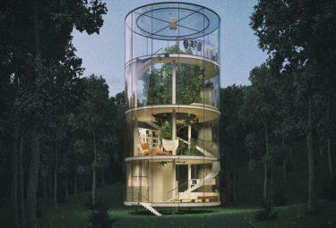 Стеклянный дом цилиндр на дереве