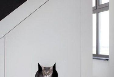 Дом кота в бельгийском доме в водонапорной башне