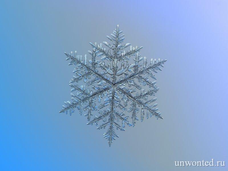 Красивая пушистая снежинка на фото