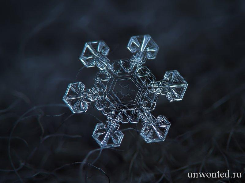 Макросъемка красивых снежинок - фото Алексей Клятов