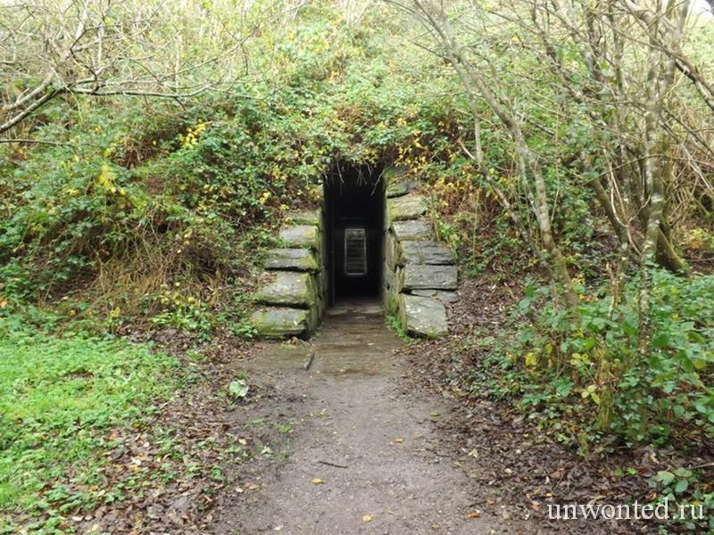 Вход в Кратер Irish Sky Garden - Корк, Ирландия