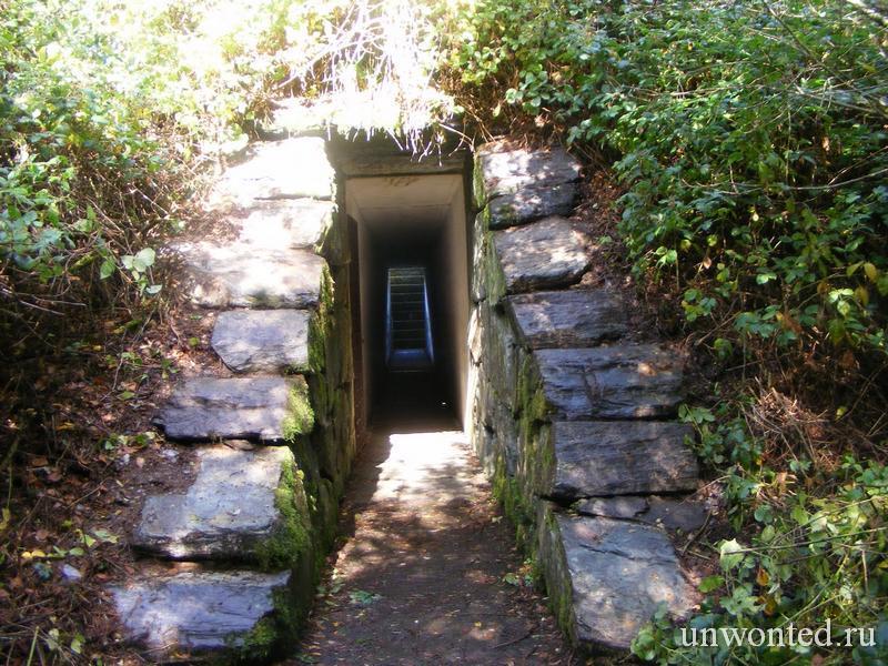 Темный туннель - вход в Ирландский Небесный Сад Джеймса Таррелла