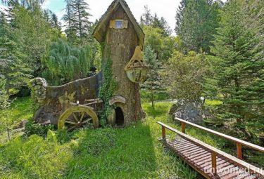 декоративный сказочный домик в стволе высохшего дерева