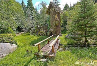 Деревянный мостик к декоративному сказочному домику в стволе дерева