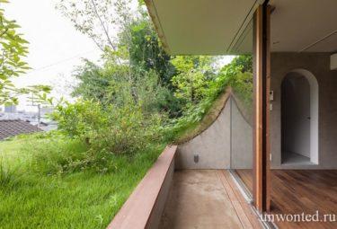 Зеленая терраса на крыше органических домов Greendo