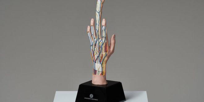 Сеющий Палец - имплант для женщин