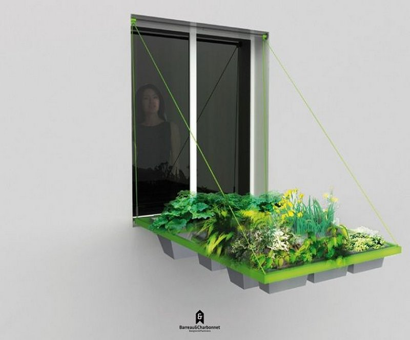 Грядка под окном