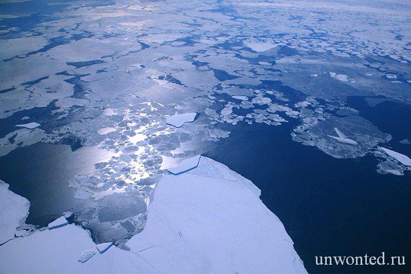 Полет над айсбергами Антарктиды