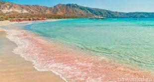 7 пляжей с розовым песком поражающие своей необычной красотой