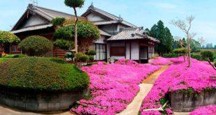 Цветочный сад Куроки